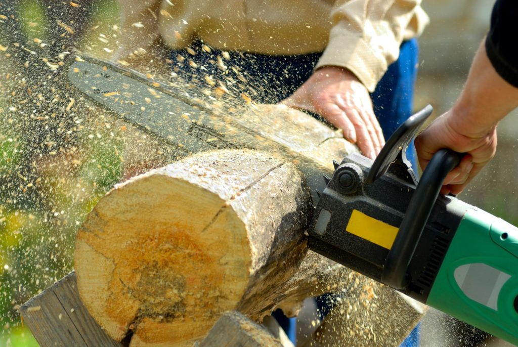 someone cutting the tree log