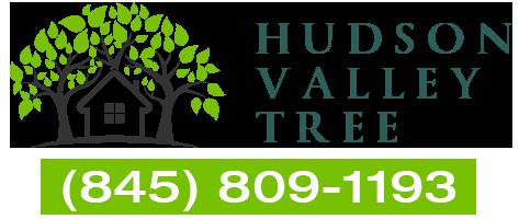 Hudson Valley Tree